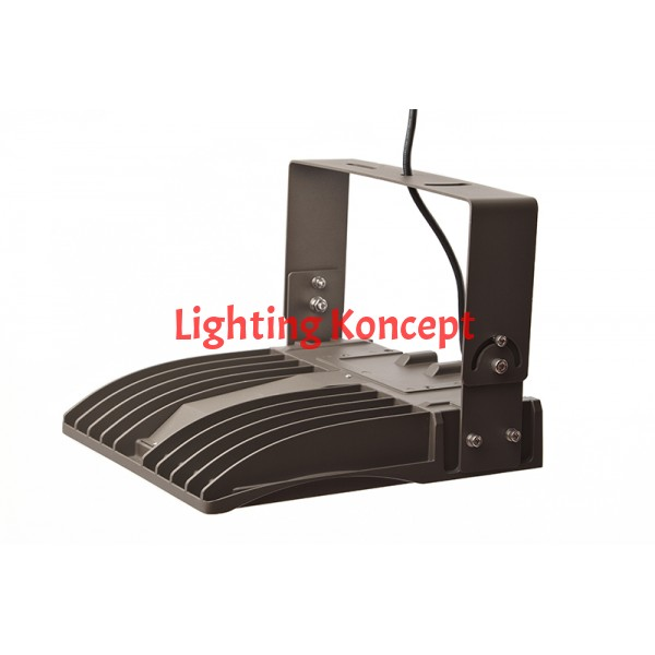 Flood Light Dlc Rated 60 Watt